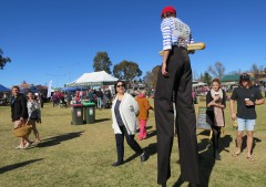 Alain attracting a lot of attention at the Farmers Markets