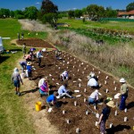 Armidale Urban Rivercare Tree Planting Day – Sunday 8 November, 8.30am