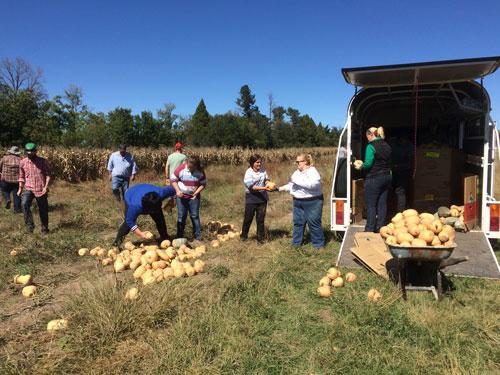 loading-pumpkins-2015
