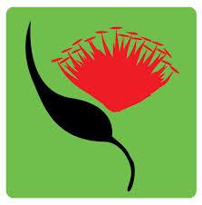 ANZSEE logo