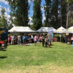 Black Gully Festival back for 9th year — sustainable fun!