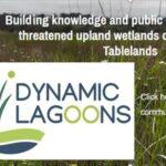 Dynamic Lagoons — 2 minute community survey